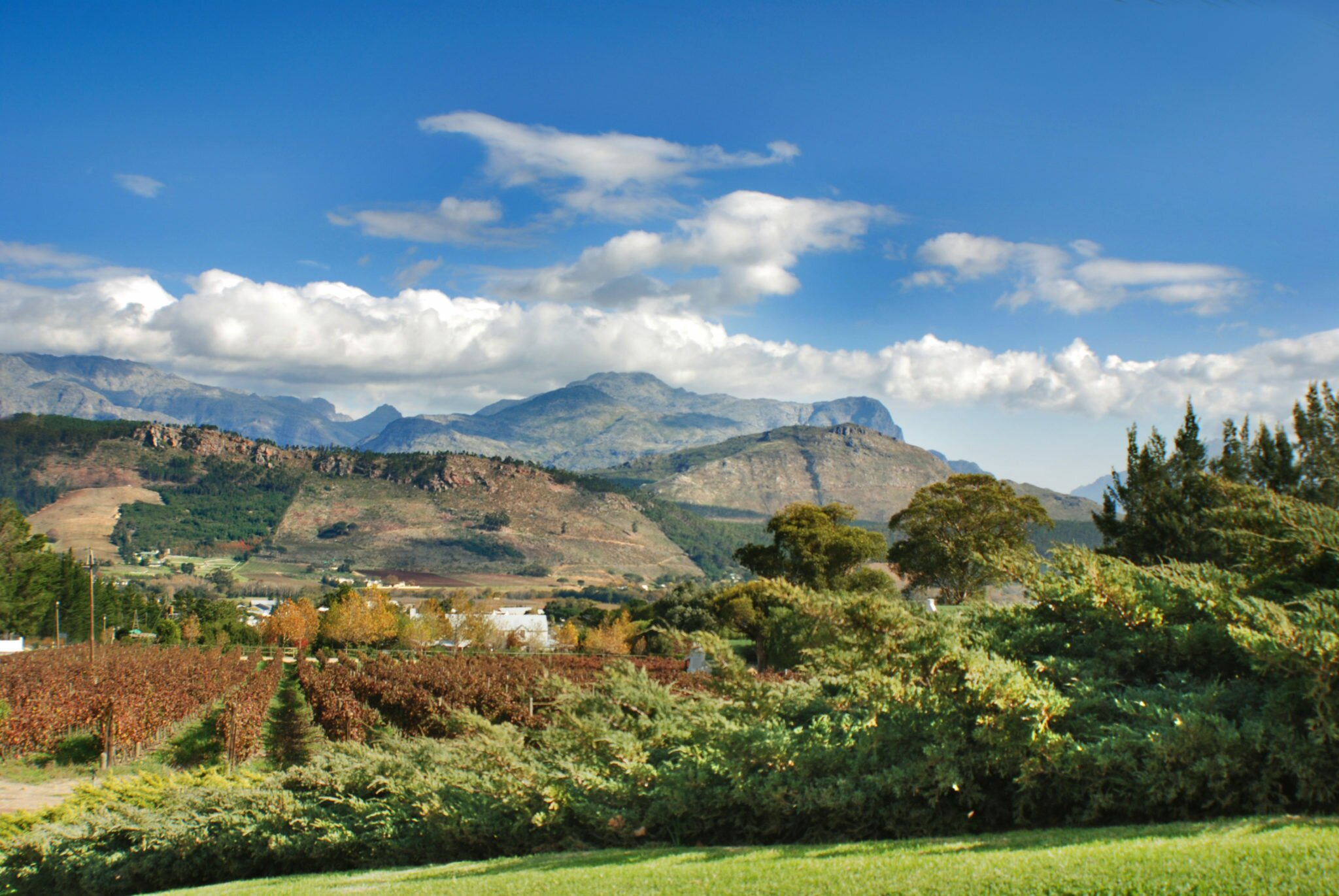Wine Country landscape SA