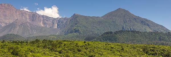 984125_FTS-Arusha National Park-600x200_022421