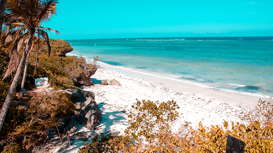 Picture of Diani Beach coastline. Kenya is a country in East Africa with coastline on the Indian Ocean.