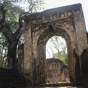 Picture of Gedi National Park