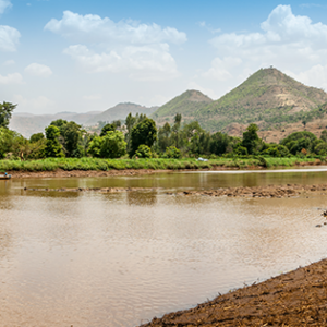 Picture of Tana River