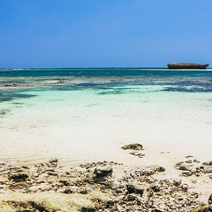 Picture of Turtle Bay in Kenya