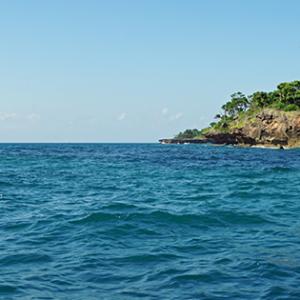 Picture of Wasini Island in Kenya