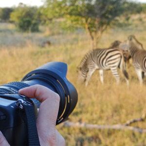 Fair Trade Safaris shooting shutter speed of 1/100